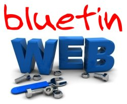 contact bluetinweb today